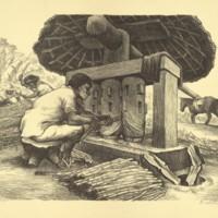 Grinding the Sugar Cane, Puebla