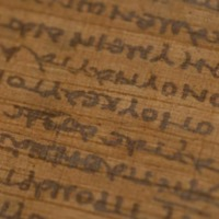 Close up of the museum-grade reproduction of the ancient Bodmer Papayrus VIII