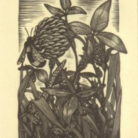 Untitled (Bee and Clover) (Print 2)
