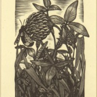 Untitled (Bee and Clover) (Print 1)